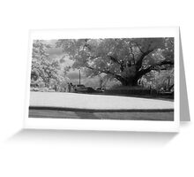 NEW FARM PARK 2 Greeting Card