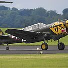 Curtis P40N - Armed to the teeth! by Colin Hollywood Photography