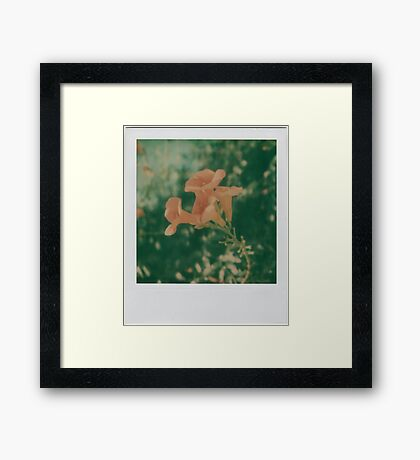 ATZ flower Framed Print