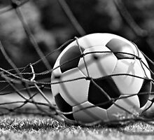 Soccer Ball by Ganz
