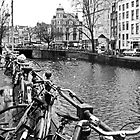 Amsterdams River by Stephen  Duffy