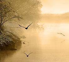 Winter, River Fowey by Caroline Bland