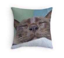 cadbury - my cat!! Throw Pillow