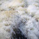 Rapids by Justin Seymour