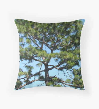 Florida tree Throw Pillow