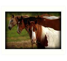 Tic-Tac-Toe Horses Art Print