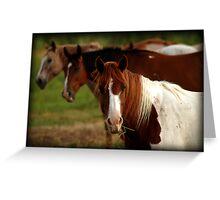 Tic-Tac-Toe Horses Greeting Card