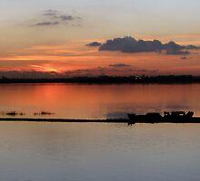 Sunset 19-12-07 by Sharon Perrett