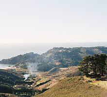 Retreat Cottage Above Green Gulch Farm, Miur Beach, CA by stephen hewitt