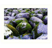 Cataract Gorge Rocks 1F Art Print