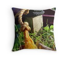 Conversation at water's edge Throw Pillow