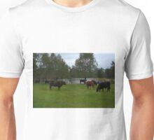Cattle grazing Unisex T-Shirt