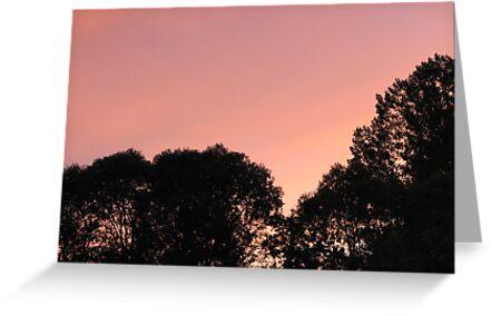 Evening Sky by gypsykatz