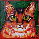 The Red Cat by Anni Morris