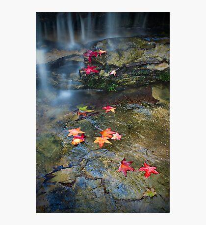 Autumn Waterfall Photographic Print