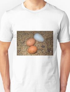 Which eggs are wich Unisex T-Shirt