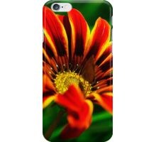Colourful flower iPhone Case/Skin