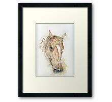 Strathmore Autumn Gold Framed Print