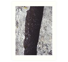 Cataract Gorge Rocks 1H Art Print