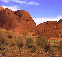 Kata Tjuta - Valley of the Winds by ChrisRoss