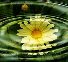 water flora by fuxart