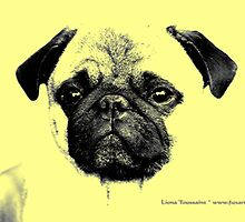 mops puppy trilogy by fuxart