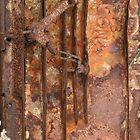 rust1 by Kirsty  MacDonald