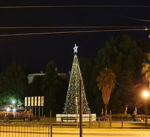 Lighting of the Christmas Tree - Bendigo by djnatdog