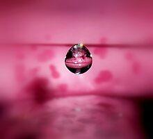 Pink Speckled Baby by funkyfacestudio