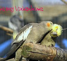 Be my Valentine by Sharon Perrett