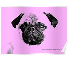 mops puppy baby pink Poster