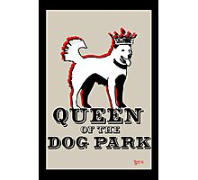 Queen of the Dog Park  Photographic Print