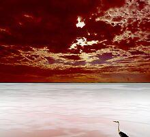horizon3 by dominiquelandau