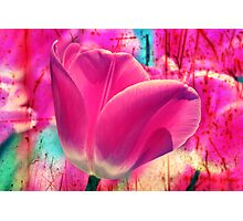 Grunge Tulip Photographic Print