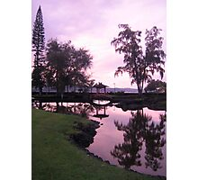 hilo, hawaii Photographic Print