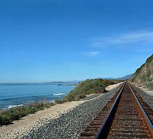 Coastal Train Tracks by Henrik Lehnerer