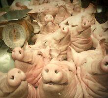 sleeping pigs heads by Amagoia  Akarregi