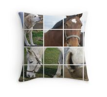 horses ensemble Throw Pillow