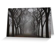 Columns of Trees in the Fog Greeting Card