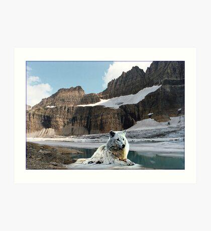 NA682-Ice Country Art Print