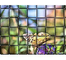 View Through The Window Photographic Print