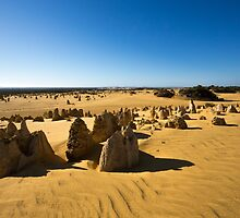The Pinnacles, Western Australia by Mark McClare