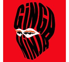 Ginga Ninja Photographic Print