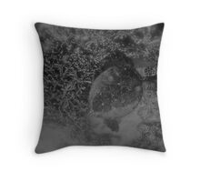 Dream of the Turtles Throw Pillow