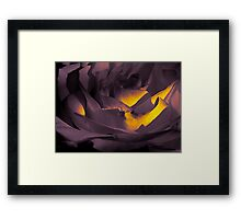 patch of light Framed Print