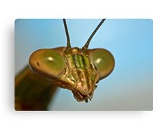 Mantis Face Canvas Print