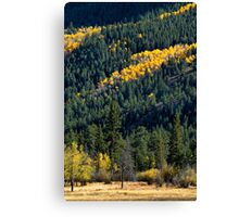 The Hills of Autumn Canvas Print