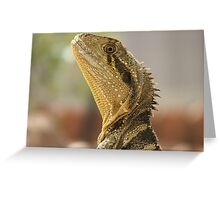 Always alert - Eastern Water Dragon Greeting Card