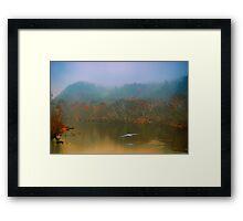 Great Blue Heron on a Misty Day Framed Print