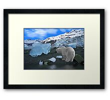 NA637-Ice, Ice Everywhere Framed Print